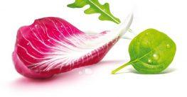 #LapostcuEisberg e cool – ai vitamine, variație, prospețime și energie