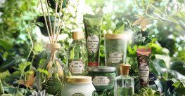 Sabon a lansat Blissful Green, ediție limitată pentru îngrijire și frumusețe cu ceai Matcha și arome parfumate din natură