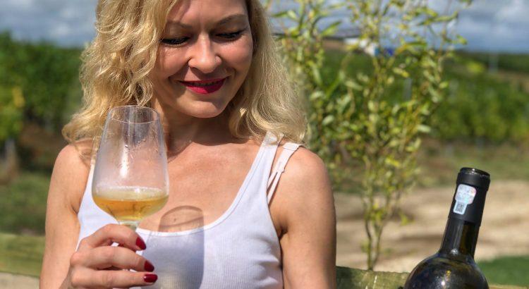 Arta și Vin la Crama Marcea (cu cele mai bune vinuri ale cramei) și Muzeul Golești – o excursie de poveste
