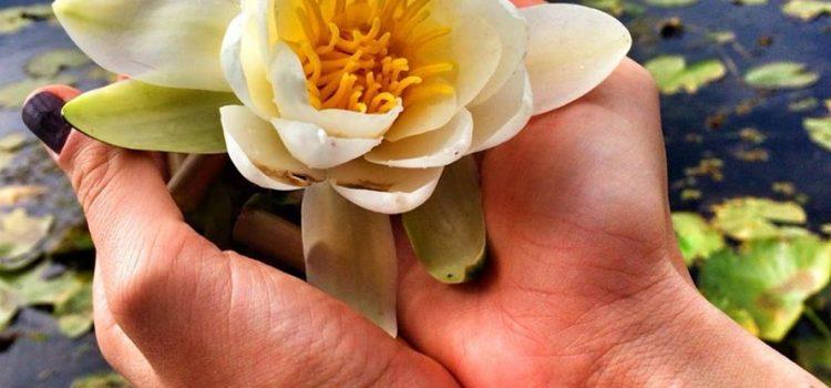 Experiențe de călătorie și retreat multisenzoriale în Deltă: Ayurveda, detox, smelling, aromaterapie, yoga și salsa