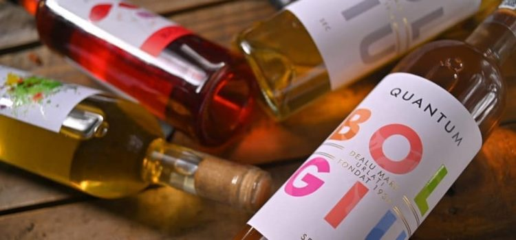 Excursie cu degustare de șase vinuri, gulaș de mistreț și alte surprize la Cramele Bolgiu